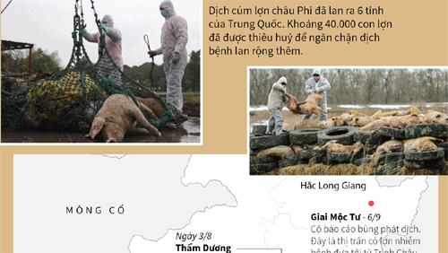 Diễn biến dịch cúm lợn châu Phi ở Trung Quốc